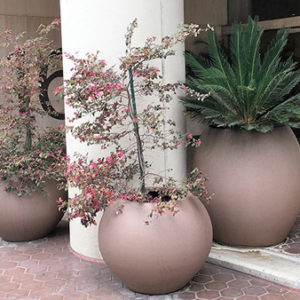 Tournesol Siteworks Aquarian Collection Round Planter Pots
