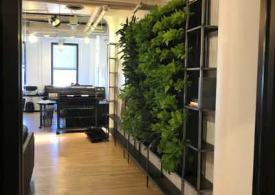 Living Wall from Tournesol Siteworks installed at Infinite Group LTD