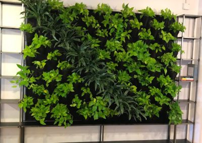 Living Wall from Tournesol Siteworks