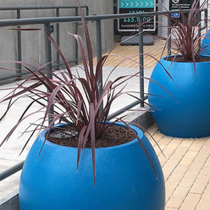 Tournesol Siteworks Aquarian Collection Circle Pots