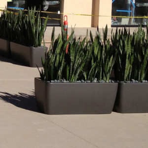 Tournesol Siteworks Downtown Collection Rectangle