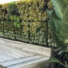 Tournesol VGM Modular Living Wall System