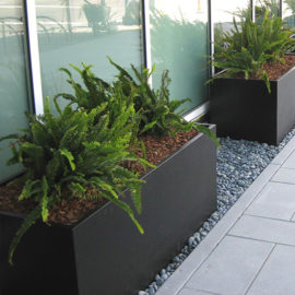 Tournesol Siteworks Wilshire Collection Rectangle